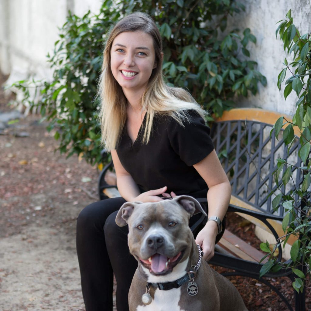 Team member Megan with her large brown and white Pitbull